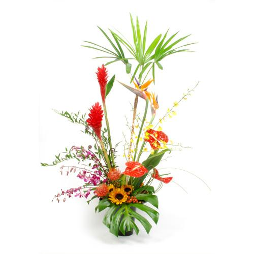 tropical floral arrangement – shop flowers in portland