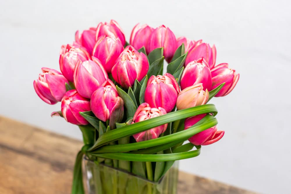 Tulips and lily grass in a rectangular vase.