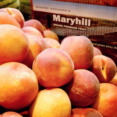 maryhill-peaches