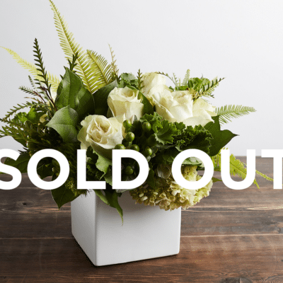 MARC 14 SOLD OUT