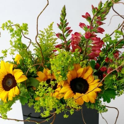 Floral Arangement from Zupan's