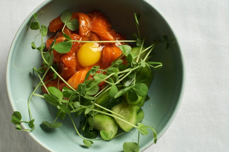 King Salmon sashimi over a bed of pickled cucumbers, micro greens and quail egg