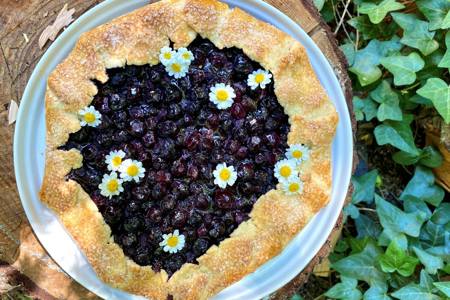 photo of a blueberry galette